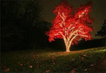 Маркировочное освещение