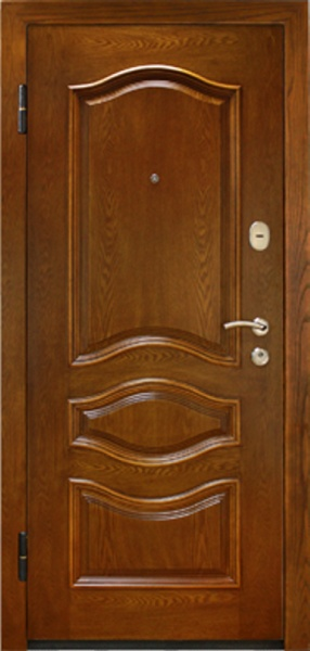 дверь металлическая входная в жуковском